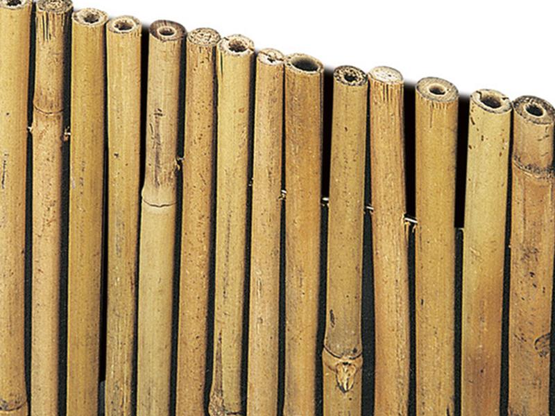 bambu-filo-passante